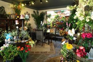 С чего начать цветочный бизнес, выбор ассортимента цветов