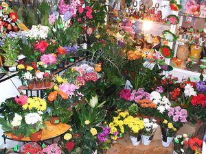 Какие ставить цены на цветы в магазине