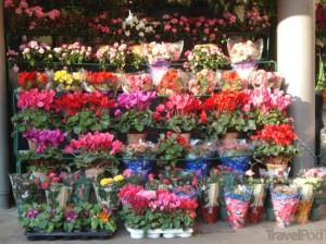 Сколько стоит открыть магазин цветов