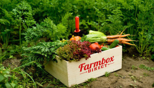 натуральные продукты из деревни с доставкой на дом